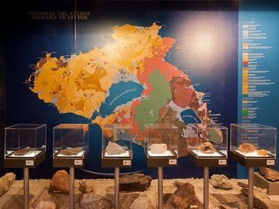 Vitrine mit den verschiedenen Gesteinen der Insel Lesbos