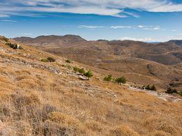 In dieser heute öden Landschaft wuchs vor 23 Millionen Jahren ein dichter Wald, der dann von vulkanischer Asche bedeckt und konserviert wurde.