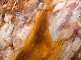 Feinste Holzfasern sind heute in Opal eingebettet
