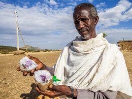 Dieser Mann verkauft Geoden mit Amethyst