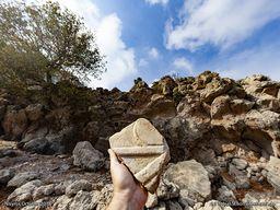 Fragent einer antiken Marmorplatte, das auf dem Schutt herumliegt. (c) Tobias Schorr 2018