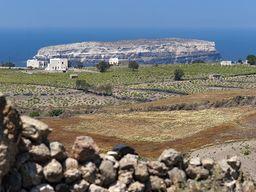 Blick auf die Felder und die dahinter liegende Insel Aspronisi. (c) Tobias Schorr