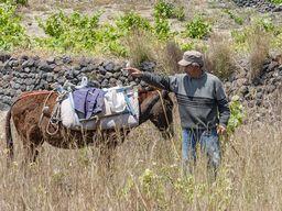 Bauer auf den Feldern von Akrotiri. (c) Tobias Schorr