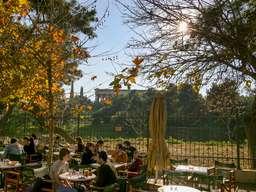 Café am Rande der antiken Agorá von Athen. (c) Tobias Schorr