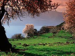 Das Bauernhaus von Giorgos Dimitriou