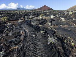 Die Lavaströmchen bei La Restinga erinnern eher an Hawaii, als an die Kanarischen Inseln. (c) Tobias Schorr