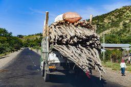 Gerüste werden in Äthiopien meistens noch aus Holz gebaut. Und das muss zur Baustelle befördert werden. (c) Tobias Schorr