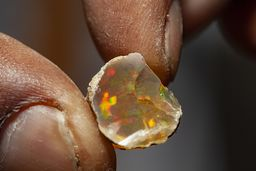 Ein kleines Bruchstück von Opal mit intensiver Farbe kann ein paar Hundert Euro wert sein! (c) Tobias Schorr