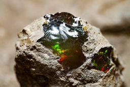 Ein wunderschöner schwarzer Glas-Opal mit intensiven Farben. (c) Tobias Schorr