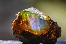 Ein toller Opal mit wunderschönem Farbspiel. (c) Tobias Schorr