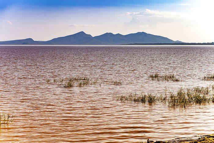 Der Blick über den Abaya-See auf eine Kette von Vulkanen auf dem Afrikanischen Rift Valley. (c) Tobias Schorr