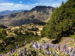 Blick in einen Canyon in Nord-Äthiopien