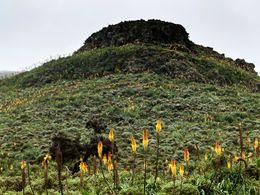 Berglandschaft im Simiengebirge im Frühling