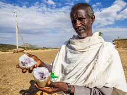 An old man who sells amethyste to tourists