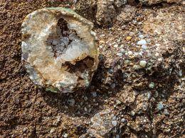 Gasreiche Lava ist die Heimat seltener Mineralien