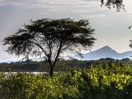 Vulkanlandschaft im Rift Valley
