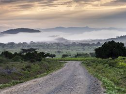 Traumhafte Fahrt durch afrikanische Landschaften