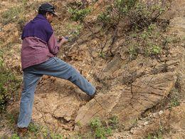 Unser Geologe Enku an einem interessanten Pegmatit