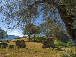 Eingangstor zum Hügel mit dem größeren Kuppelgrab