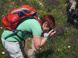 """Fotografieren ist einer der Hauptgründe, weshalb """"Wandern"""" auf allen Reisen ein wichtiger Punkt ist. (c) Tobias Schorr, April 2017"""