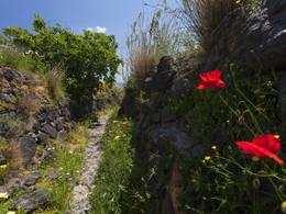 Der Wanderweg von Pyrgos nach Emporion. (c) Tobias Schorr, April 2017