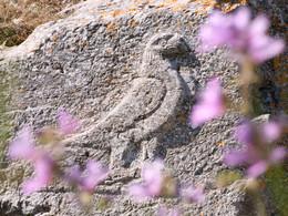 Adler im Artemidoros-Heiligtum
