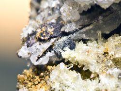 Bleiglanzkristall von Cerussit überwuchert in einer Druse mit Quarzkristallen(Athinios-Hafen)