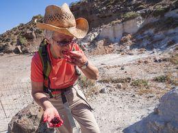 Auf Wanderstudienreisen kann man leckere Entdeckungen machen... (c) Tobias Schorr
