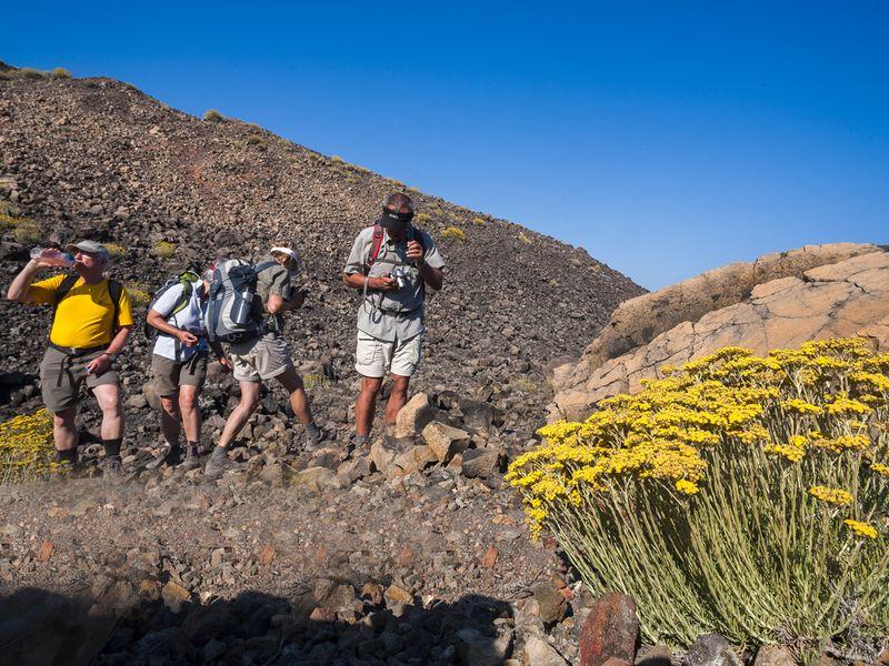 """Die Gruppe bestaunt die """"Brotkrustenbombe"""" auf dem Vulkan Nea Kameni. (c) Tobias Schorr"""