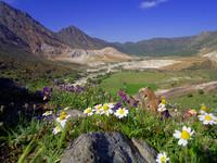 Blick in die Kaldera von Nisyros - Wenn Sie auf das Bild klicken, kommen Sie zum Reiseprogramm Nisyros!