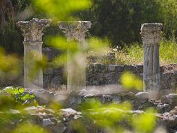 Blick auf die Säulenreihe des antiken Marktplatz von Kos
