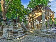 The platane of Hippocrates in Kos. (c) Tobias Schorr