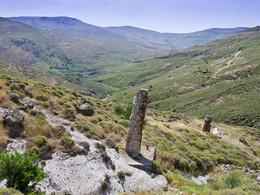 In dieser Landschaft erstreckte sich ein Wald, bis vor 23 Millionen Jahren ein Vulkanausbruch alles mit Asche bedeckte.