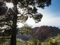 Blick auf den Lavadom beim Dorf Kameni Chora auf Methana. (c) Tobias Schorr