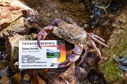 VolcanoDiscovery gründete ich 2005 mit Tom Pfeiffer und wir arbeiten auch heute wieder zusammen. (c) Tobias Schorr