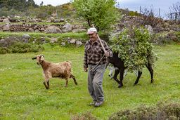 Der herzliche Sattler Kostas aus Pano Mouska begegnete uns im Zentrum der Berge Methanas. (c) Tobias Schorr