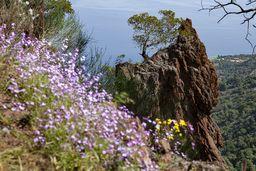 Dieser Felsen ist das Maskottchen für den historischen Lavadom bei Kameni Chora. (c) Tobias Schorr