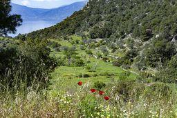Das kleine Tal neben Kameni Chora. (c) Tobias Schorr