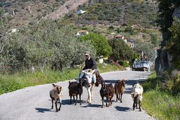 Ein Bauer auf dem Weg zu seinen Feldern. (c) Tobias Schorr