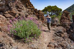 Die Felsen der sekundären Lavaströme des historischen Vulkans sind erreicht. (c) Tobias Schorr