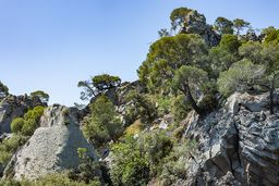 Die Felsen des zentralen Lavadoms. (c) Tobias Schorr