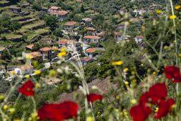 """Blick auf das Dorf Kameni Chora. Der Name bedeutet so viel, wie """"verbranntes Land"""", was mit dem Lavastrom nebendran zu tun hat. (c) Tobias Schorr"""