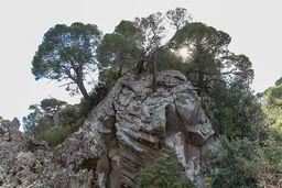 Die Felsen der zentralen, primären Laven des historischen Vulkans von Methana. (c) Tobias Schorr