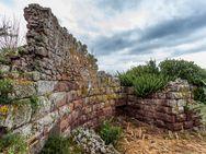 Der Eingang der antiken Akropolis bietet interessante Entdeckungen...