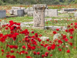 Dorische Säule des Asklepios-Heiligtums von Troizen