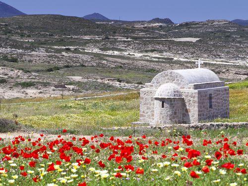 Frühling an der Nordküste von Milos (c) Tobias Schorr