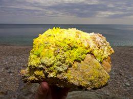 Schwefel- und Alaunsalze aus einer Mofette vom Paliochori-Strand auf Milos (c) Tobias Schorr