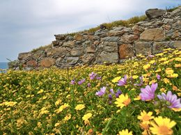 The walls of the prehistoric town of Phylacopi on Milos island