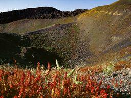 Einer der Daphne-Krater auf der Insel Nea Kameni. (c) Tobias Schorr