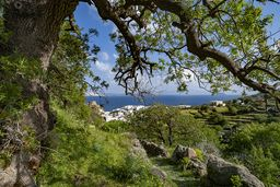 Der wunderschöne Wanderweg von Mandraki zur antiken Akropolis Paliokastro. (c) Tobias Schorr
